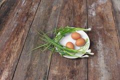 Φρέσκο αυγό κοτόπουλου στενό σε έναν επάνω πιάτων και κρεμμύδι στον ξύλινο πίνακα Στοκ εικόνες με δικαίωμα ελεύθερης χρήσης