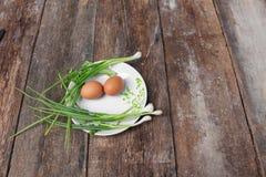 Φρέσκο αυγό κοτόπουλου στενό σε έναν επάνω πιάτων και κρεμμύδι στον ξύλινο πίνακα Στοκ Εικόνα