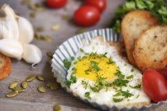 Φρέσκο αυγό με τις φρυγανιές για το πρόγευμα Στοκ Εικόνες