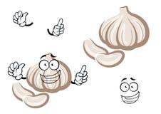 Φρέσκο λαχανικό βολβών σκόρδου κινούμενων σχεδίων Στοκ Εικόνα