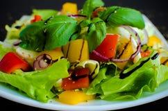 φρέσκο λαχανικό ντοματών σαλάτας μιγμάτων μαρουλιού αγγουριών Στοκ φωτογραφίες με δικαίωμα ελεύθερης χρήσης