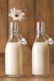 φρέσκο γάλα Στοκ Φωτογραφίες