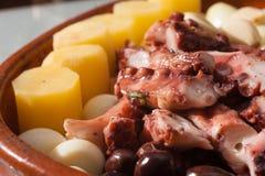 Φρέσκο γεύμα χταποδιών Στοκ Φωτογραφία