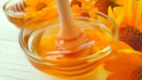 Φρέσκο γλυκό σε αργή κίνηση οργανικό επιδόρπιο λουλουδιών μελιού κίτρινο απόθεμα βίντεο