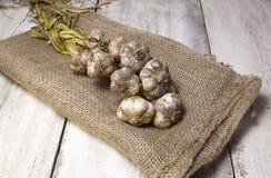 Φρέσκο επιλεγμένο σκόρδο που πλέκεται και σε έναν burlap σάκο στοκ εικόνα με δικαίωμα ελεύθερης χρήσης