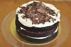 Φρέσκο εύγευστο μαύρο δασικό κέικ στοκ εικόνες
