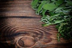 Φρέσκο θυμάρι, δεντρολίβανο και λογικά φύλλα Στοκ φωτογραφία με δικαίωμα ελεύθερης χρήσης