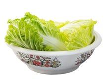 φρέσκο ιαπωνικό λαχανικό σαλάτας τροφίμων στοκ εικόνες