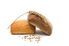 Φρέσκο ιταλικό ciabatta ψωμιού με τα αυτιά του σίτου Στοκ εικόνα με δικαίωμα ελεύθερης χρήσης