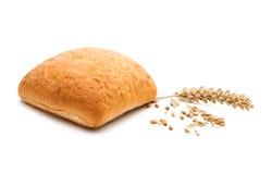 Φρέσκο ιταλικό ciabatta ψωμιού με τα αυτιά του σίτου Στοκ φωτογραφία με δικαίωμα ελεύθερης χρήσης