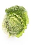 Φρέσκο κατσαρό λάχανο που απομονώνεται σε ένα λευκό Στοκ Φωτογραφία