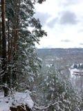 φρέσκο κοντινό χιόνι σιδηροδρόμων πόλεων στο λευκό Δάσος πεύκων Στοκ φωτογραφίες με δικαίωμα ελεύθερης χρήσης