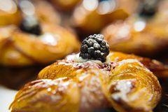 Φρέσκο κουλούρι στροβίλου ρόλων γλυκό με το Blackberry στοκ φωτογραφίες