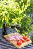Φρέσκο κρέας, λαχανικά και μπουκάλι του κρασιού σε ένα πικ-νίκ υπαίθρια Στοκ Εικόνα
