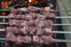 Φρέσκο κρέας που μαρινάρεται με τα κρεμμύδια και τα καρυκεύματα για τη σχάρα Στοκ φωτογραφία με δικαίωμα ελεύθερης χρήσης