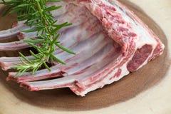 Φρέσκο κρέας Πλευρά αρνιών κρέας ακατέργαστο Στοκ Εικόνες