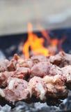 Φρέσκο κρέας σε ένα οβελίδιο χάλυβα Στοκ Φωτογραφίες