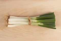Φρέσκο κρεμμύδι στοκ φωτογραφία με δικαίωμα ελεύθερης χρήσης