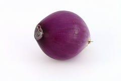 Φρέσκο κρεμμύδι ή κρεμμύδι Στοκ Φωτογραφία