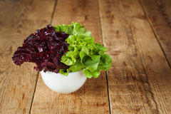 Φρέσκο κόκκινο και πράσινο κατσαρό λάχανο στο κεραμικό κύπελλο Εκλεκτική εστίαση Στοκ Εικόνες