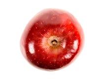 Φρέσκο κόκκινο - Apple που απομονώνεται η εύγευστη Στοκ εικόνα με δικαίωμα ελεύθερης χρήσης