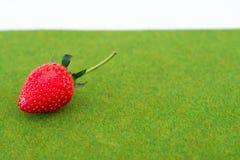 Φρέσκο κόκκινο Stawberry στο πράσινο υπόβαθρο χλόης Στοκ Εικόνες