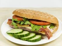 φρέσκο λαχανικό σάντουιτ&si Στοκ εικόνες με δικαίωμα ελεύθερης χρήσης