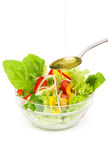 φρέσκο λαχανικό σαλάτας &epsi Στοκ φωτογραφία με δικαίωμα ελεύθερης χρήσης