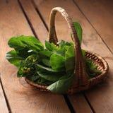 φρέσκο λαχανικό Στοκ φωτογραφίες με δικαίωμα ελεύθερης χρήσης