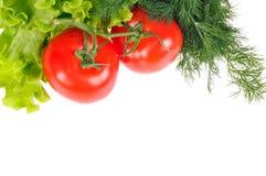 φρέσκο λαχανικό στοκ φωτογραφία με δικαίωμα ελεύθερης χρήσης