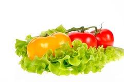φρέσκο λαχανικό Στοκ Εικόνα