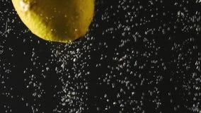 Φρέσκο λεμόνι που περιέρχεται στο νερό με τις φυσαλίδες στο μαύρο υπόβαθρο Φρέσκα μούρα στο νερό Οργανικό μούρο, φρούτα απόθεμα βίντεο