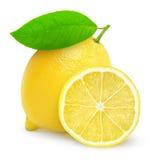 Φρέσκο λεμόνι στοκ εικόνες
