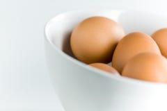 φρέσκο λευκό καφετιών αυγών κύπελλων Στοκ εικόνες με δικαίωμα ελεύθερης χρήσης