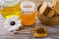 Φρέσκο μέλι μελισσών στοκ φωτογραφίες με δικαίωμα ελεύθερης χρήσης