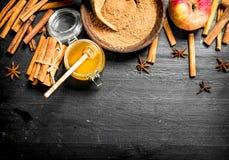 Φρέσκο μέλι με την επίγεια κανέλα και τη Apple Στοκ Εικόνα