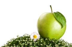 Φρέσκο μήλο σε μια πράσινη χλόη Στοκ εικόνες με δικαίωμα ελεύθερης χρήσης