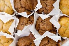 φρέσκο μίνι muffin κέικ Στοκ φωτογραφίες με δικαίωμα ελεύθερης χρήσης
