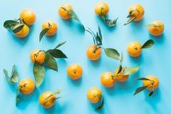 Φρέσκο μανταρίνι που απομονώνεται στην μπλε punchy κρητιδογραφία Τοπ όψη Σχέδιο φρούτων στοκ φωτογραφίες