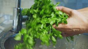 Φρέσκο μαρούλι που πλένεται κάνοντας τον ψεκασμό νερού απόθεμα βίντεο