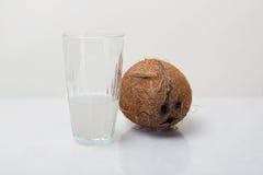 Φρέσκο νερό καρύδων Στοκ Φωτογραφία