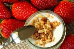 Φρέσκο οργανικό γιαούρτι με τις φράουλες Στοκ εικόνες με δικαίωμα ελεύθερης χρήσης