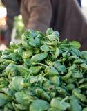 Φρέσκο οργανικό πράσινο σπανάκι στην αγορά Στοκ Φωτογραφία