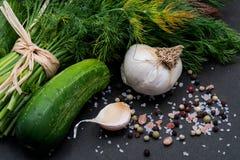 Φρέσκο οργανικό σκόρδο, αγγούρι, άνηθος, χονδροειδής θάλασσα και ρόδινο άλας Himalayan, Peppercorns ουράνιων τόξων στο σκοτάδι στοκ φωτογραφία με δικαίωμα ελεύθερης χρήσης