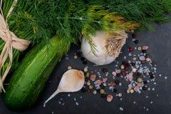 Φρέσκο οργανικό σκόρδο, αγγούρι, άνηθος, χονδροειδής θάλασσα και ρόδινο άλας Himalayan, Peppercorns ουράνιων τόξων στο σκοτάδι στοκ εικόνες με δικαίωμα ελεύθερης χρήσης