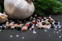 Φρέσκο οργανικό σκόρδο, αγγούρι, άνηθος, χονδροειδής θάλασσα και ρόδινο άλας Himalayan, Peppercorns ουράνιων τόξων στο σκοτάδι στοκ εικόνα με δικαίωμα ελεύθερης χρήσης
