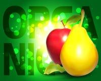 Φρέσκο οργανικό υπόβαθρο φρούτων ελεύθερη απεικόνιση δικαιώματος