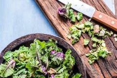 Φρέσκο λουλούδι νεαρών βλαστών των Βρυξελλών και κατσαρού λάχανου στοκ φωτογραφία με δικαίωμα ελεύθερης χρήσης