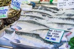 Φρέσκο ολόκληρο sockeye salmons στην αγορά θέσεων λούτσων Στοκ εικόνα με δικαίωμα ελεύθερης χρήσης