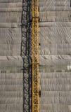 Φρέσκο πλύσιμο μπρόκολου στο νεροχύτη στοκ φωτογραφία